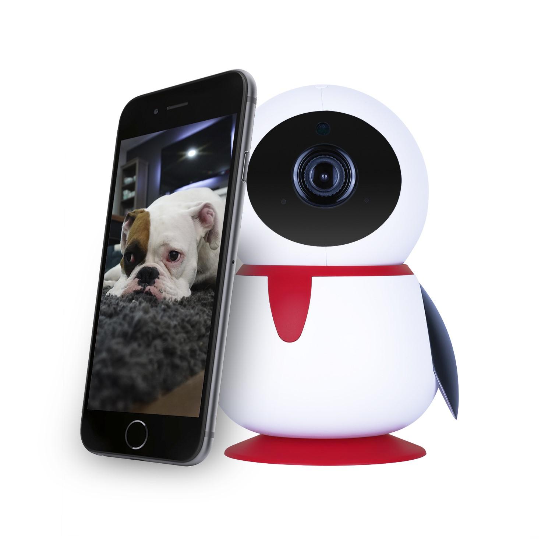 electriQ HD 1080p Wifi Pet Monitoring Pan Tilt Zoom Camera with 2-way audio  & dedicated App